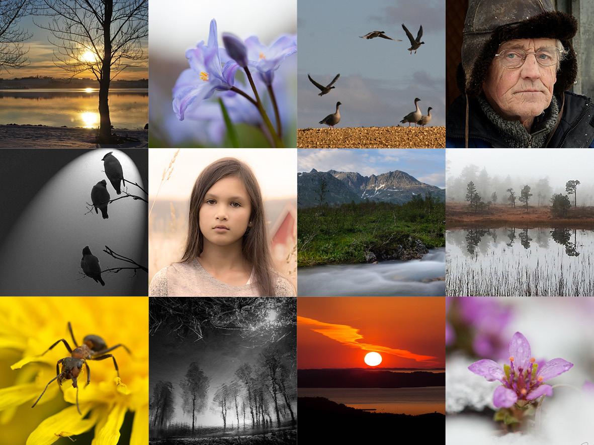 Fotokonkurransen2014